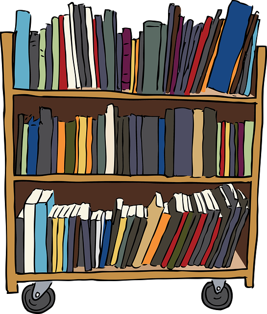 library-shelves.png